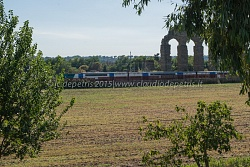 Parco degli Acquedotti, 20/8/2015