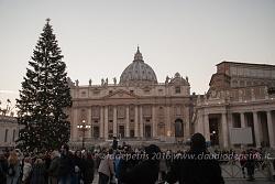 Illuminato l'albero di Natale in Vaticano 9/12/2016