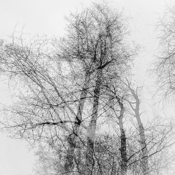 © Mirko Bonfanti - mirkobonfanti.com