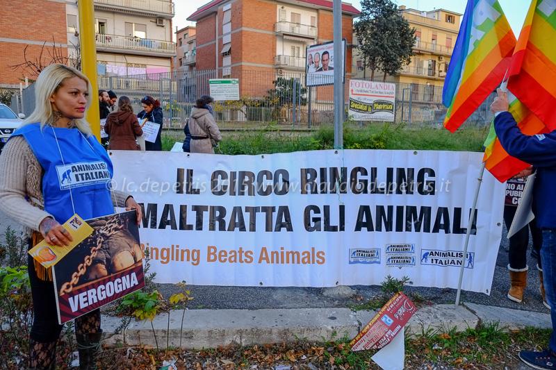 Presidio degli Animalisti Italiani contro l'impiego degli  animali nei circhi, 13/12/2015